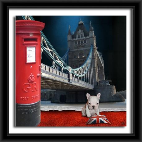 LONDON (Mail Box)