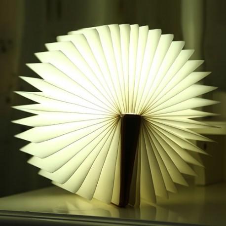LAMPE LIVRE LUMINEUX avec sa couverture en bois