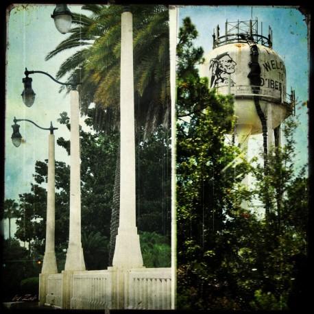 VINTAGE 13 C Tallahassee 2012